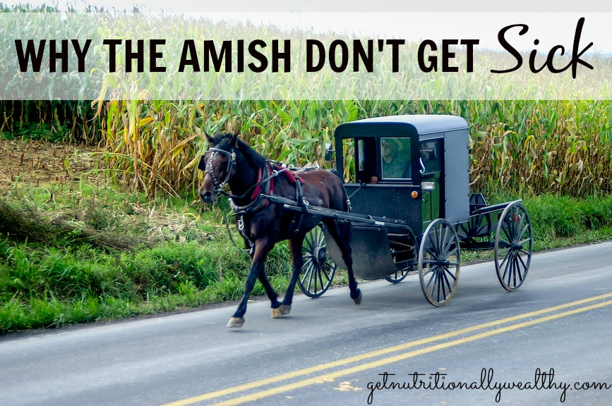 Why the Amish don't get sick | nutritionallywealthy.com